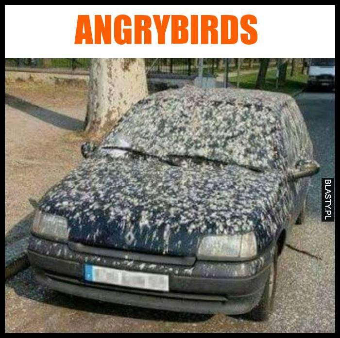 auto humor śmieszne s-car
