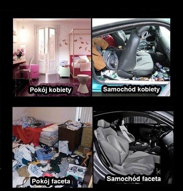 skup aut Krasnystaw, auto śmieszne, humor