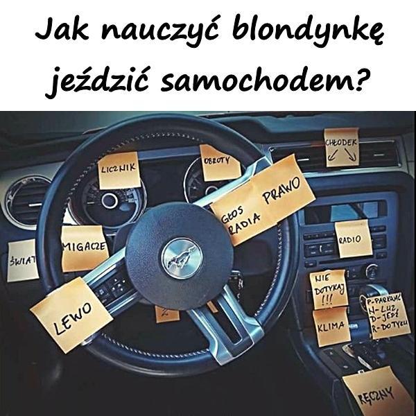 blondynka samochód